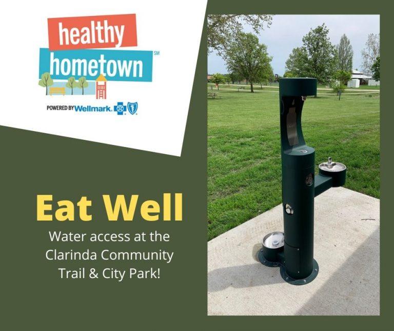 Healthy Hometown - website graphic
